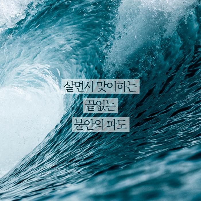 선기본웹자보1.png
